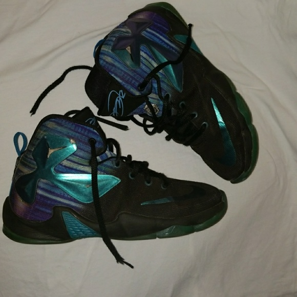 Lebron James Akronite 13 Nike RARE Chameleon. M 5b6ba6cdbaebf6aab4c22dfd ad4cbc704004